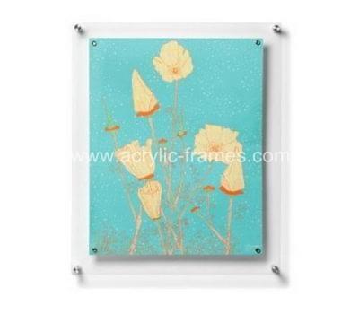 Acrylic wall mounted frames