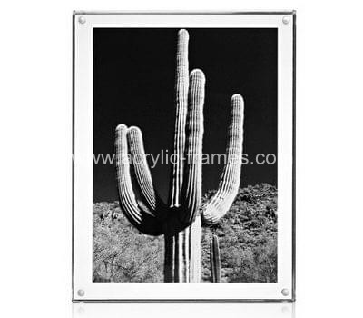 Acrylic wall mount picture frames